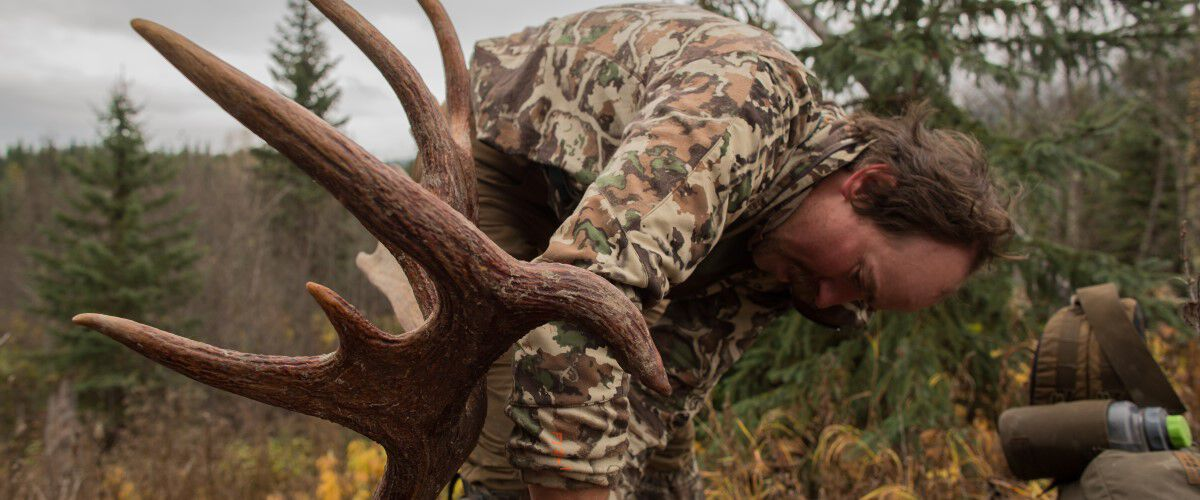 Ryan Callaghen packing antlers