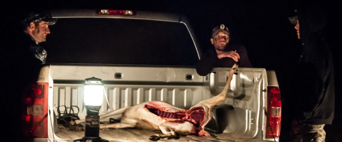 Hunters standing around a pickup with a downed deer in the truck bed