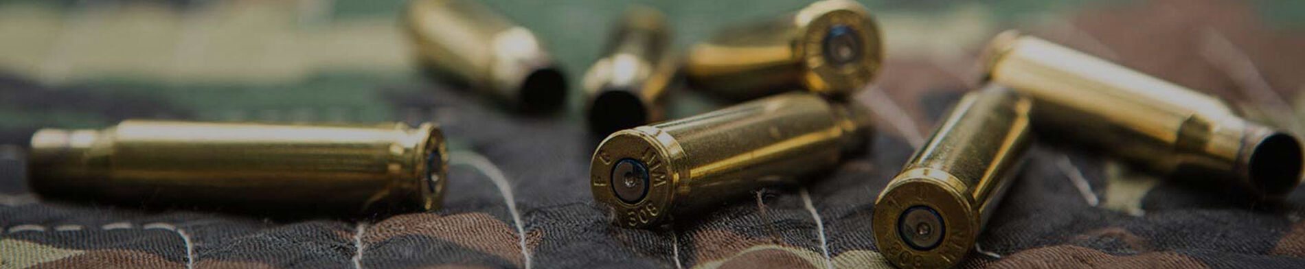 Ammunition Cases