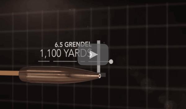 Valkyrie Video 4