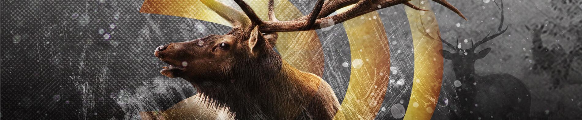 Gold Standard Returns Elk