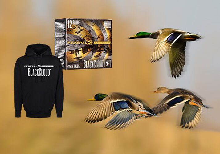 Drop Ducks Save Bucks Promotion