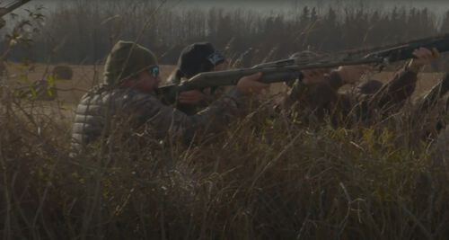 Hunters lined up shooting geese in tall grass