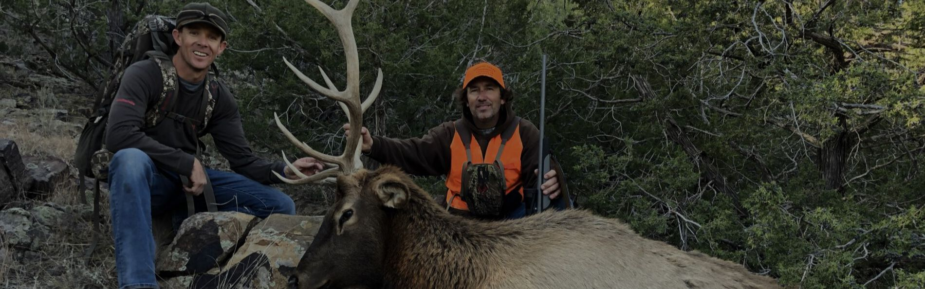 Two hunters kneeling by a downed elk