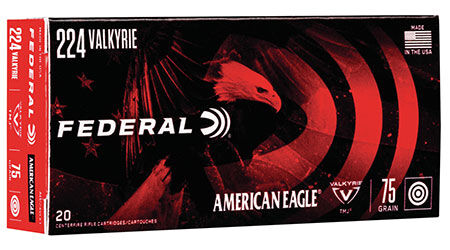 American Eagle TMJ