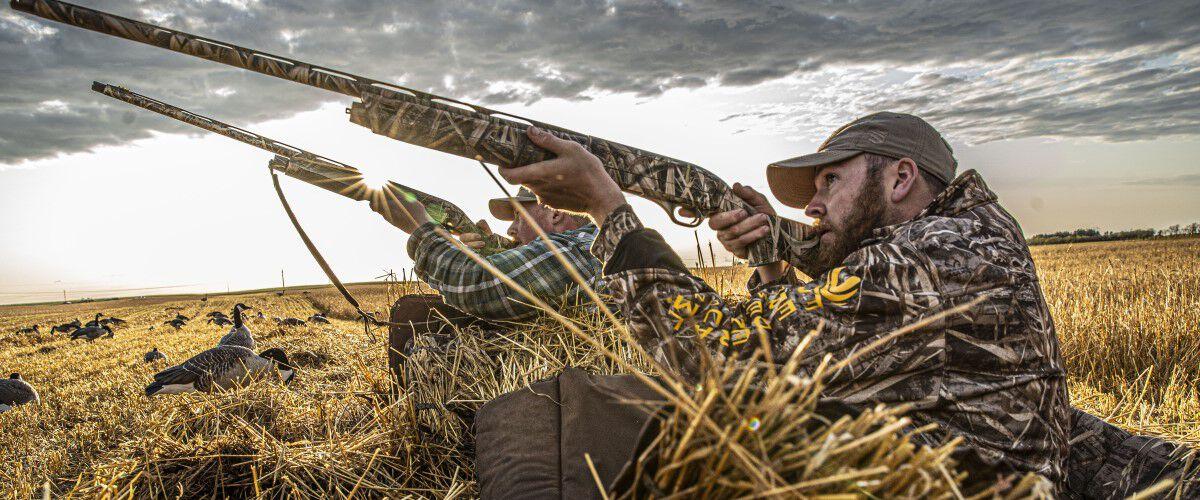 Hunters hiding in the grass aiming their shotguns