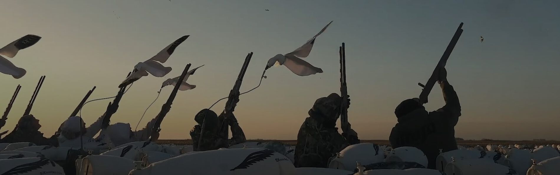 hunters sitting amoungst snow goose decoys with those shotguns pointed to the sky