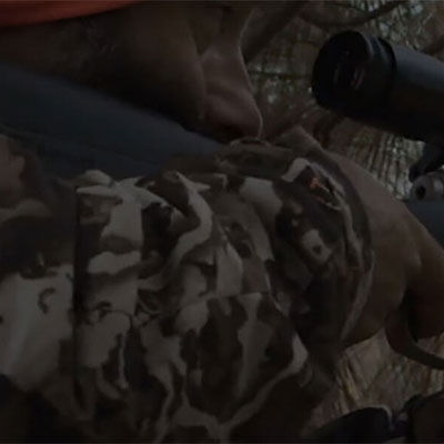 person Aiming a Rifle