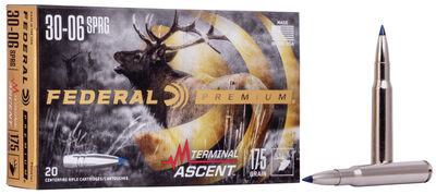 Terminal Ascent