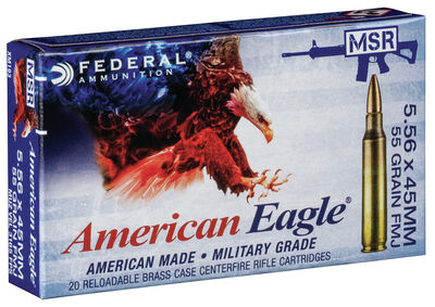 American Eagle Training